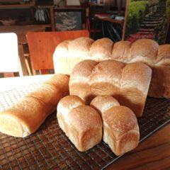 国産小麦100%自家製パン